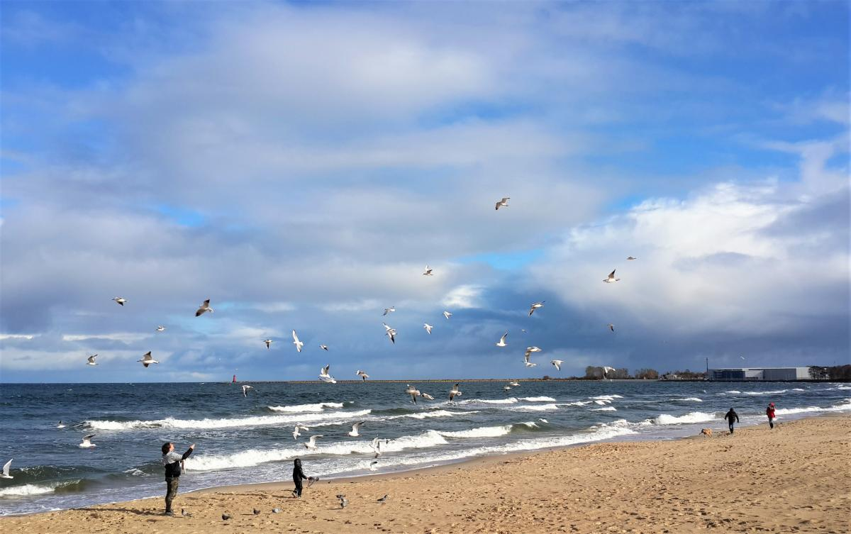 Балтийское море в Гданьске / Фото Марина Григоренко