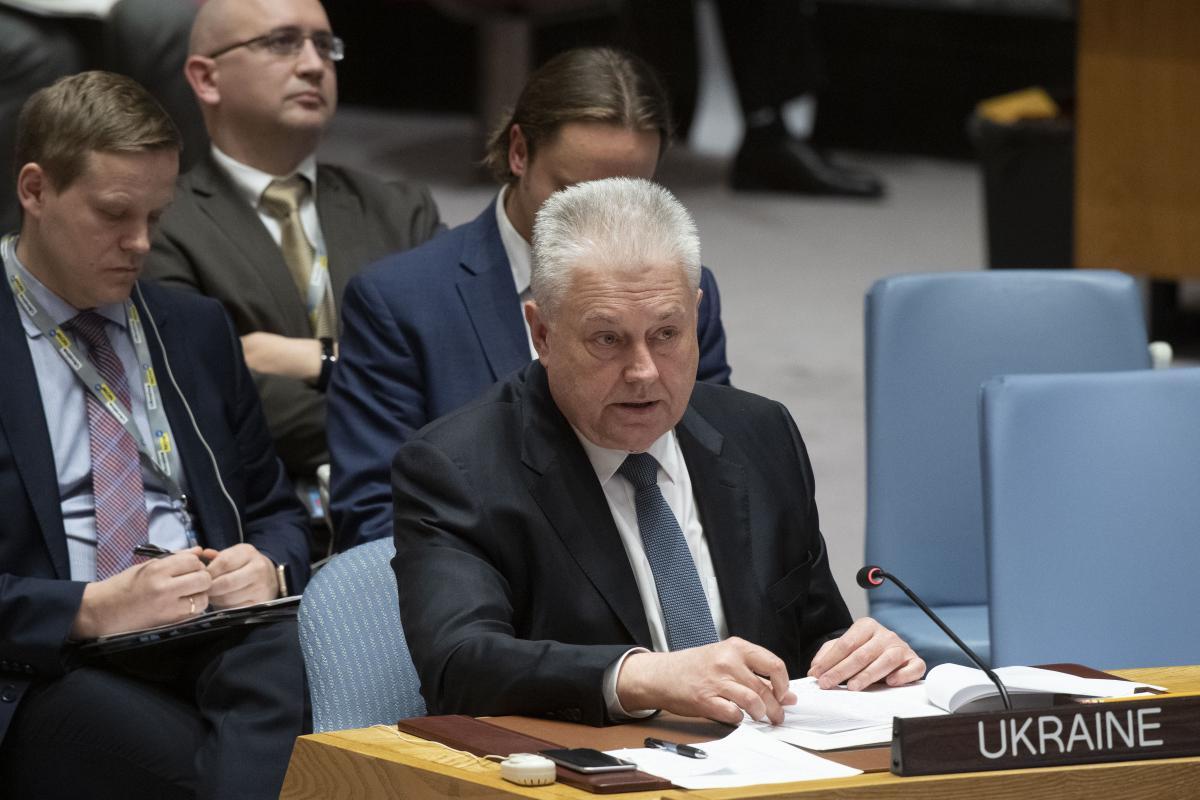 Владимир Ельченко / фото UN Photo/Evan Schneider