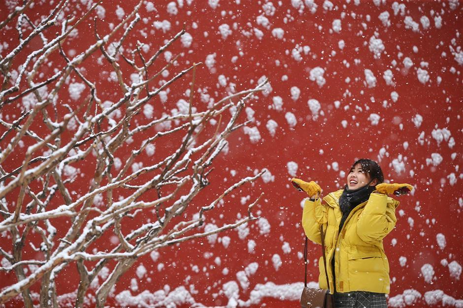 Снігопад в Пекіні / www.shine.cn, Imaginechina