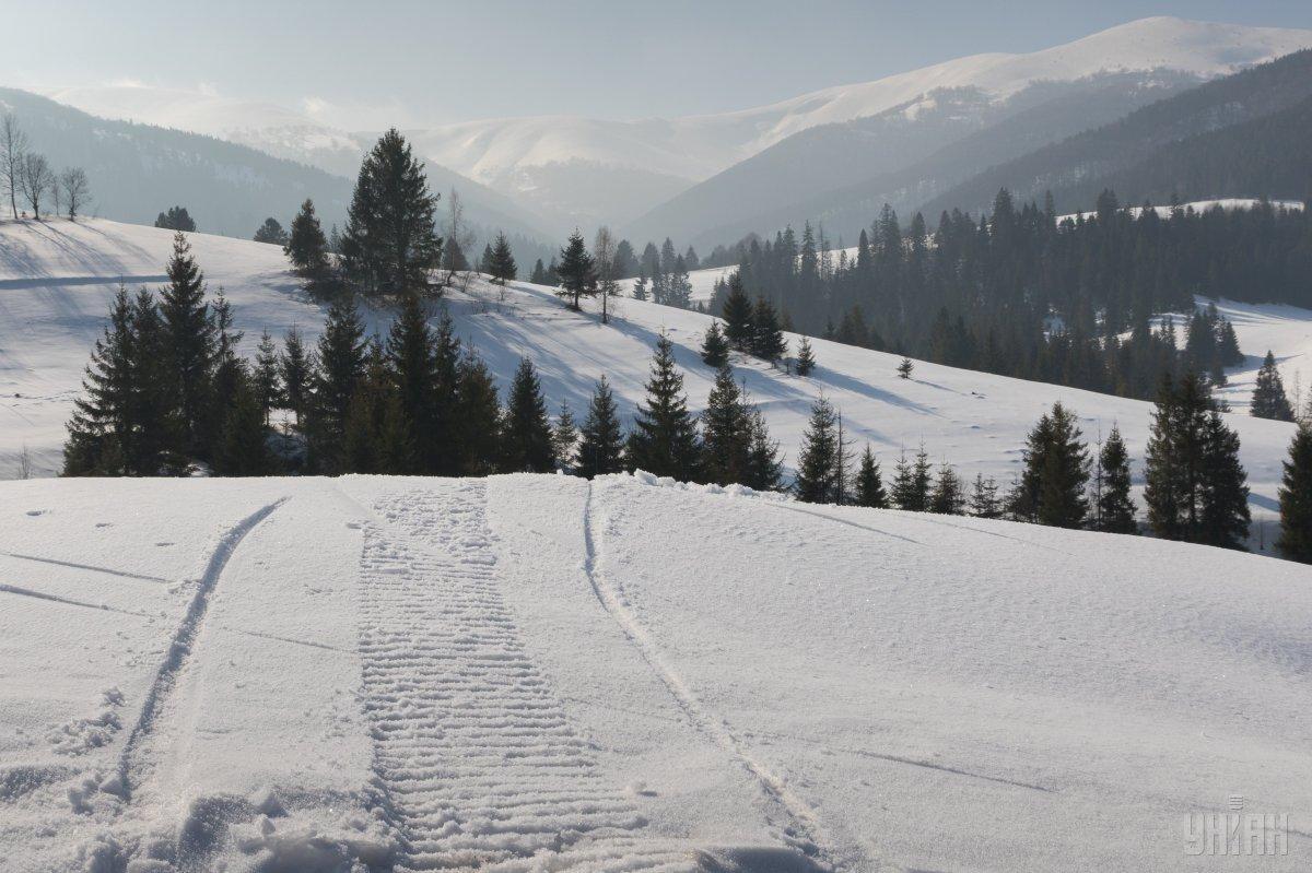 В Карпатах выпал снег / Фото УНИАН