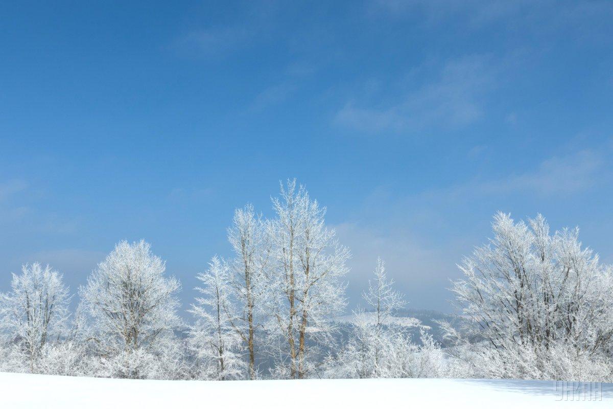 Синоптик прогнозує сніжну зиму / Фото УНІАН