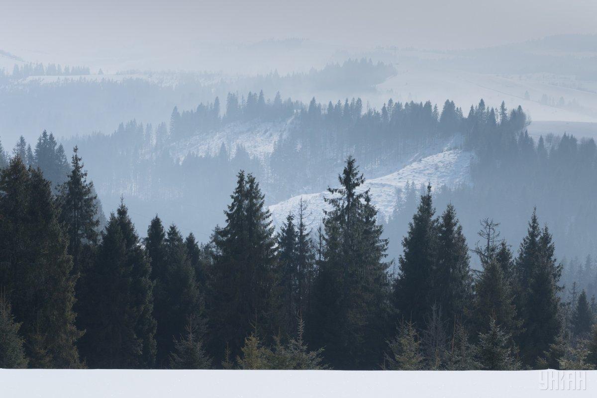 В Карпатах могут сходить лавины / Фото УНИАН
