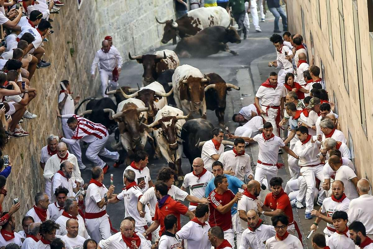 Бег быков на улицах города Памплона / Фото google.com