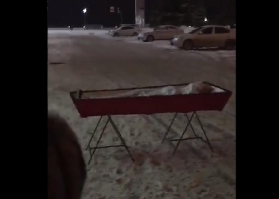 В Самаре женщина принесла гроб с бывшим мужем к зданию правительства / скриншот