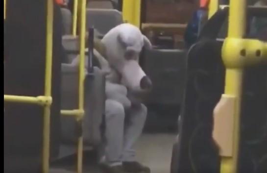 Аніматор сидів у тролейбусі із сумно похиленою донизу головою / скріншот