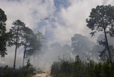 Лісові пожежі в Чилі знищили десятки будинків