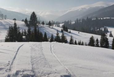 Карпаты засыпало снегом: местами высота снежного покрова достигает 133 см