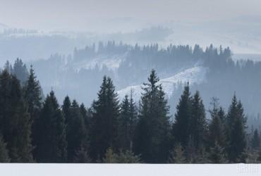Синоптики рассказали, какой будет погода на Новый год и Рождество