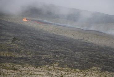 На острові Реюньон сталося виверження вулкана (відео)