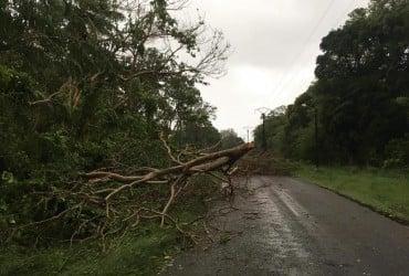 """Тропический циклон """"Ома"""" принес мощный ветер в Новую Каледонию (видео)"""