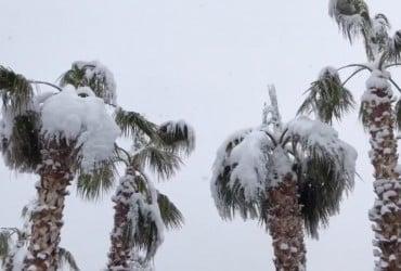 Лас-Вегас засыпало снегом (фото)