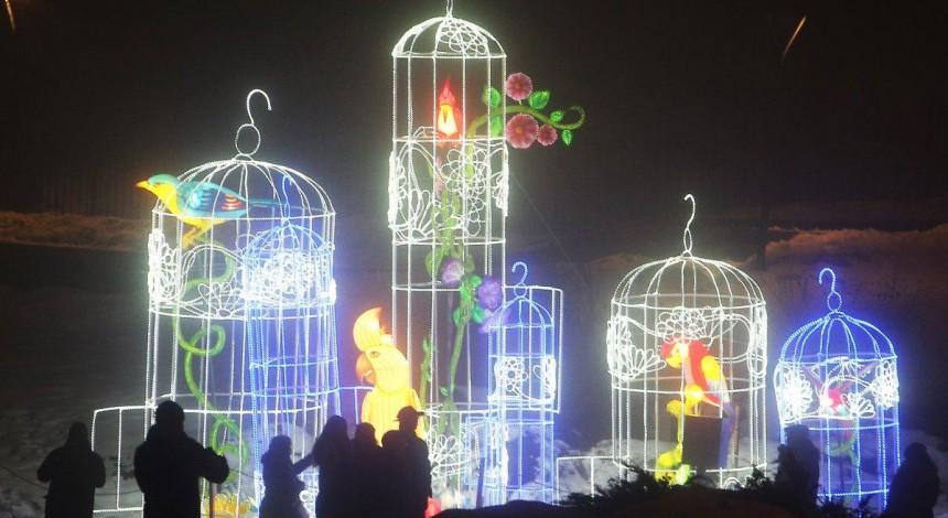 Kyiv hosts Chinese Lantern Festival (Photo, video)