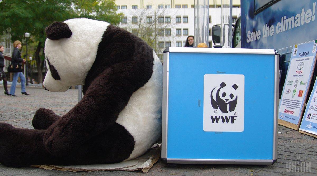 Активисты WWF будут проводить 30 марта ряд акций в Украине / фото УНИАН