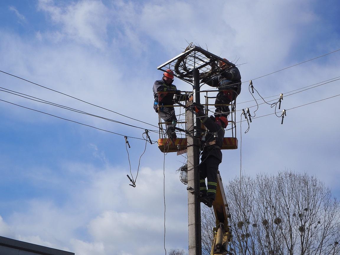 """Гнезда для птиц устанавливают в нескольких районах области \ Пресс-служба Чао """"Львовоблэнерго"""""""