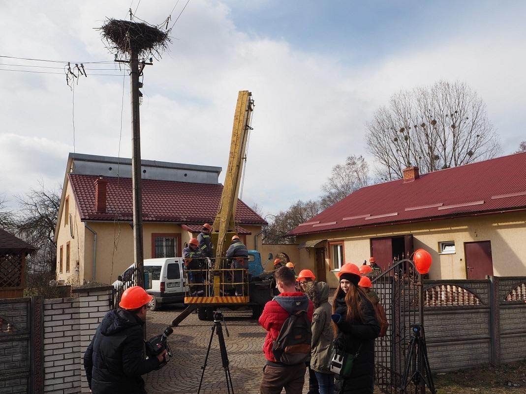 """Энергетики устанавливают гнезда для аистов \ Пресс-служба Чао """"Львовоблэнерго"""""""