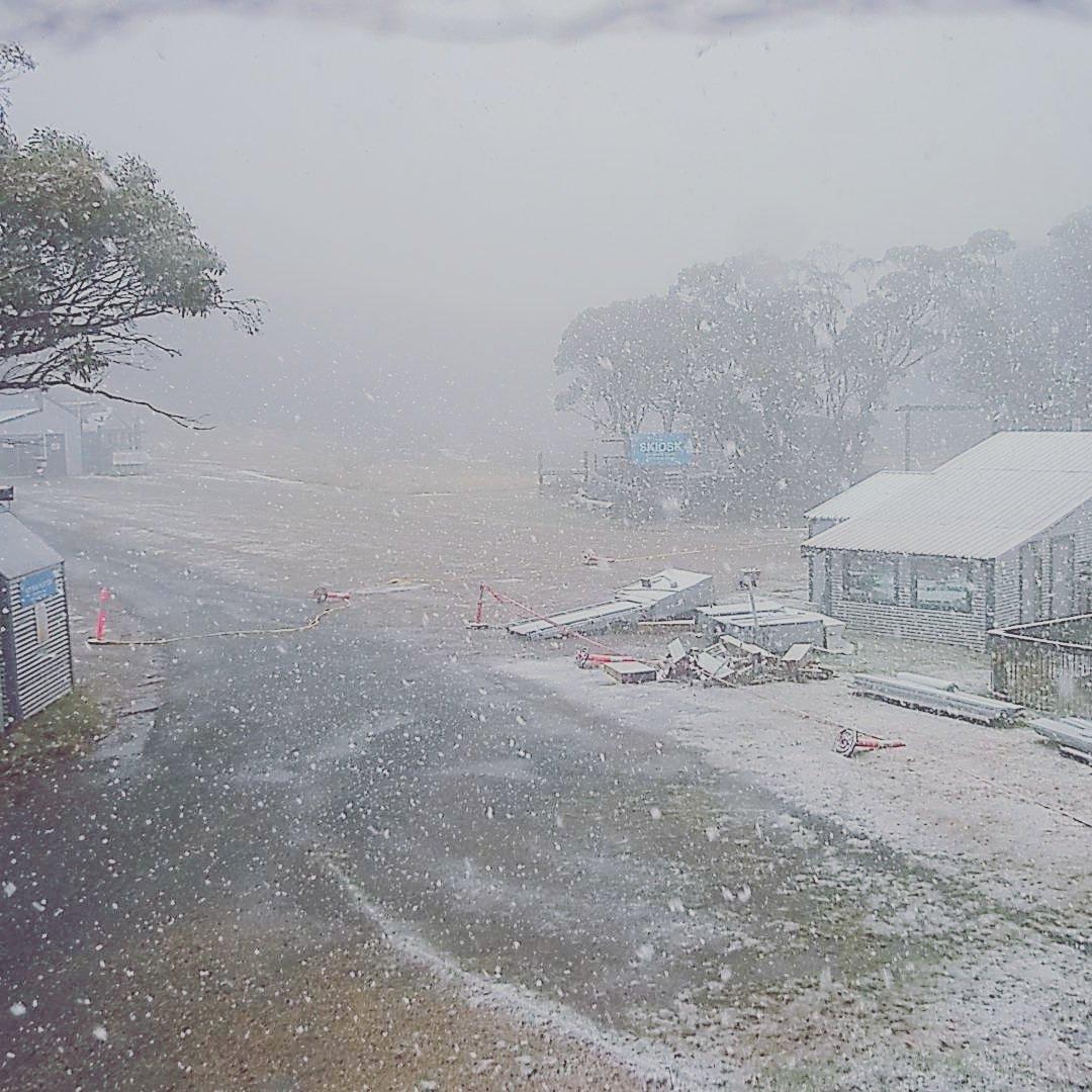 В Австралии выпал снег / twitter.com/MountBawBaw