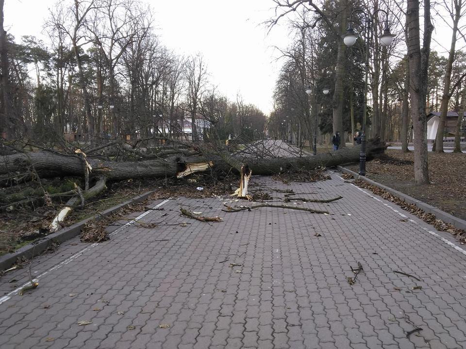 Спасатели призывают жителей города быть осторожными / gk-press.if.ua