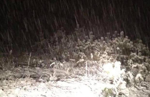 Дороги замело снегом / Фото: депутат Львовского городского совета Игорь Зинкевич/facebook