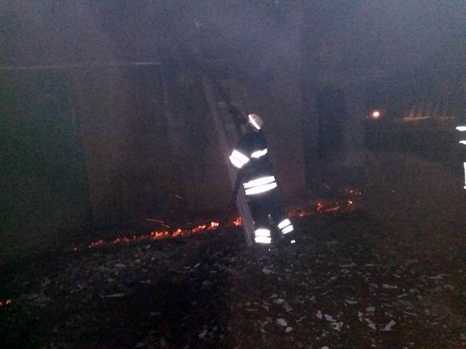При ликвидации пожара в свинарнике пожарные спасли 350 поросят / фото ГСЧС