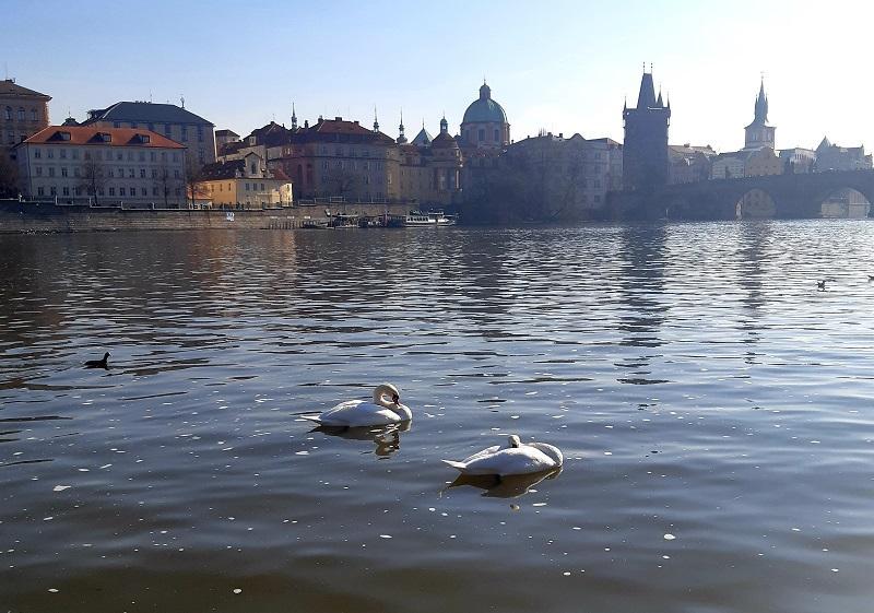 Карловий міст, Прага / Фото Юлія Корнійчук