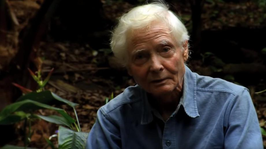 С 1970-х годов поэт жил на Гавайях и отказывался отвечать на телефонные звонки \ 360tv.ru