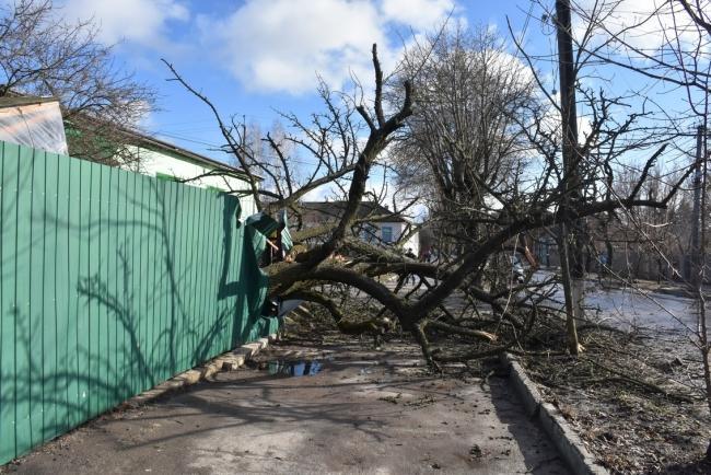 Сильні пориви вітру спостерігалися сьогодні в Глухові / фото nedelya.info