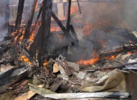 Возле Херсона два дня горел камыш и сухостой / фото ks.dsns.gov.ua
