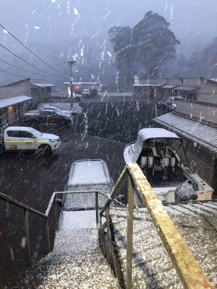 В Австралии выпал снег / twitter.com/SNOWSEARCH_aus