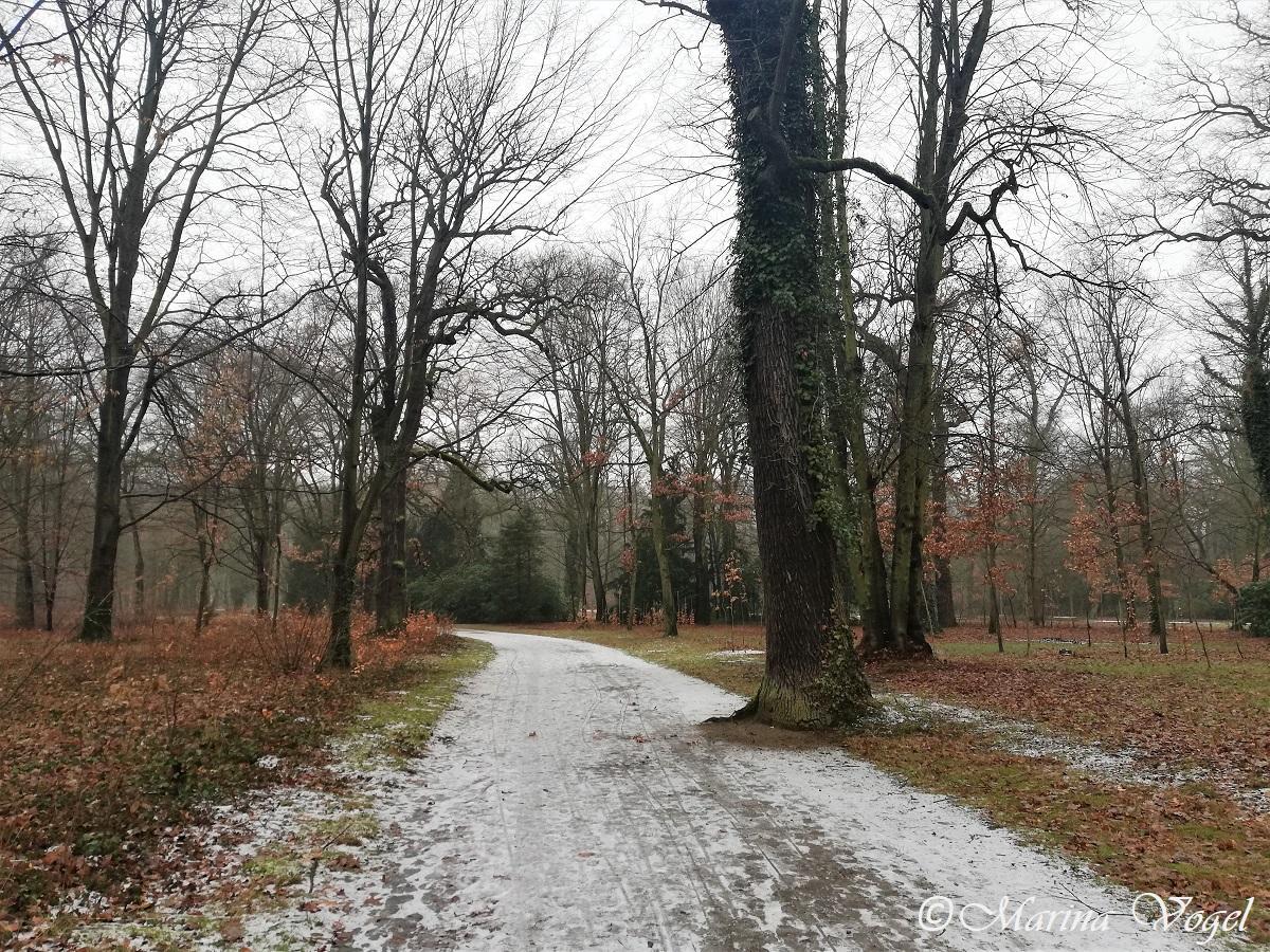 Уютные аллеи в парке Сансуси / Фото Марина Григоренко