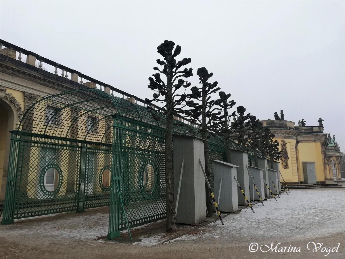 Дворец Сансуси в Потсдаме зимой / Фото Марина Григоренко