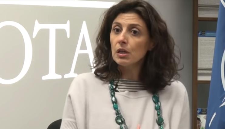Розария Пуглиси рассказала о визите в Грузию Генсекретаря НАТО Йенса Столтенберга / скриншот