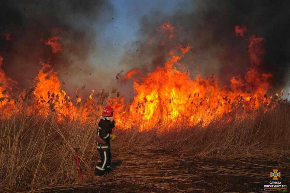 Україна отримала допомогу для боротьби з пожежами у Чорнобильській зоні / Фото: ДСНС