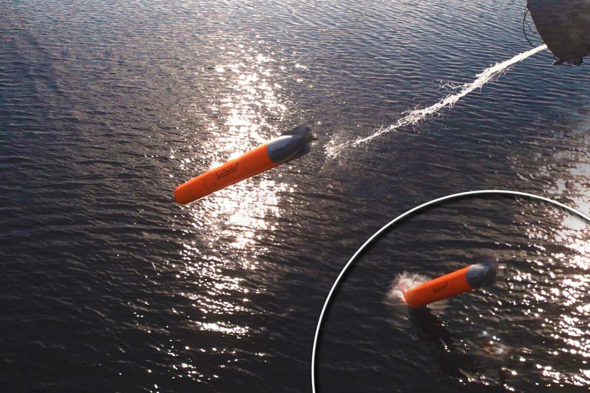 Немцы испытали новые противоторпедные торпеды / atlas-elektronik.com