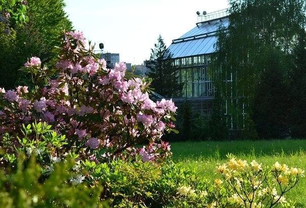 Ботсад Львовского национального университета им. Франко является одним из старейших садов Украины \ dyvys.info