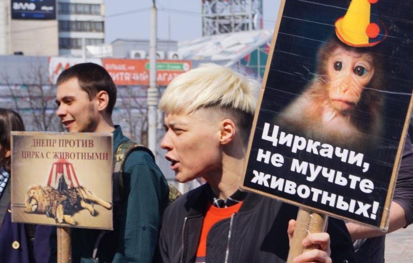Зоозащитники призвали украинцев отказаться от походов в цирк с животными \ Юлия Рацибарская\ радио Свобода