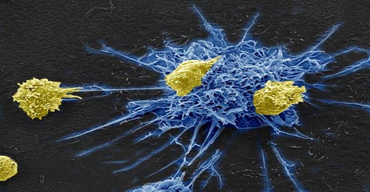 Для діагностування ВІЛ тепер можна використовувати два швидкі тести різних виробників / фото naked-science.ru