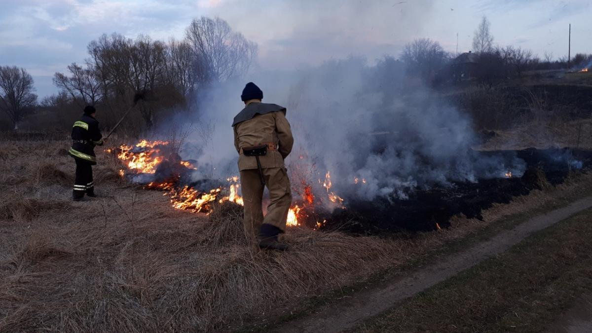 В Украине могут увеличить штрафы за сжигание листьев и сухой травы / фото kh.dsns.gov.ua