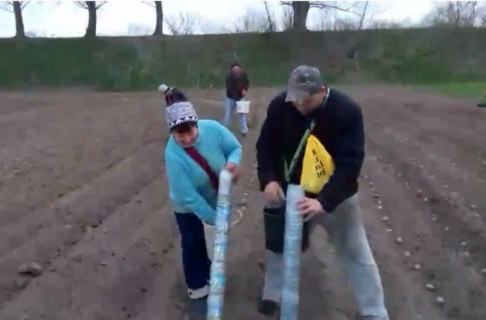 Украинец изобрел трубу для высаживания картофеля/ Скриншот с видео - Facebook, Андрей Кубай