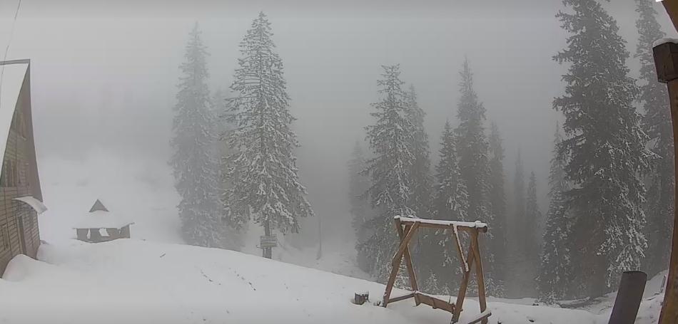 Снігопад у Драгобраті / snig.info