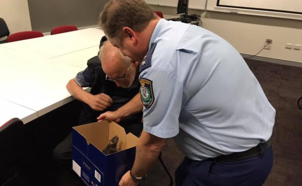 Стражам порядка удалось найти пропавшую крысу \ @nswpolice