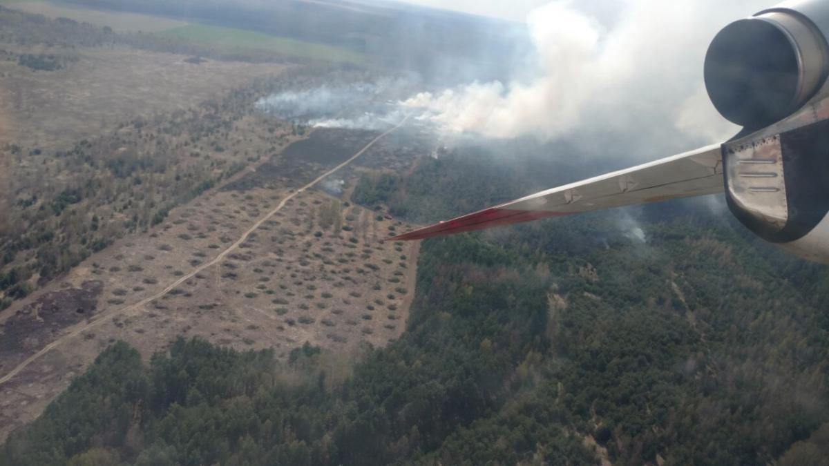Спасатели локализовали лесной пожар / cn.dsns.gov.ua