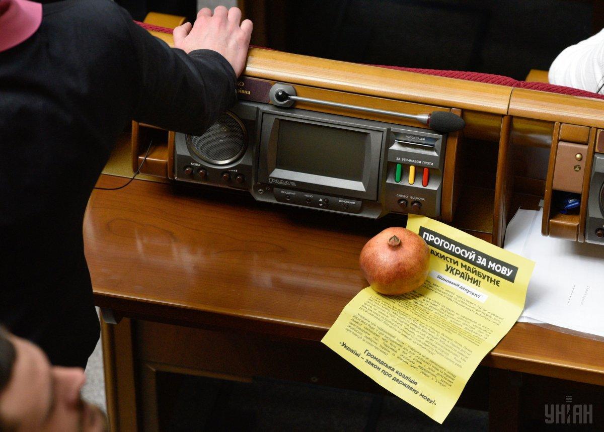 Савченко принесла в Раду гранат / Фото УНИАН