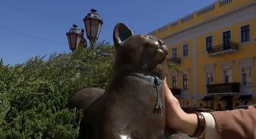 """Это уже седьмая фигура в рамках проекта """"Одесские коты"""" / скриншот видео ТСН"""