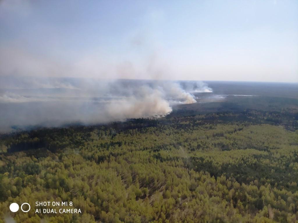 Точна причина пожежі наразі встановлюється / фото ДСНС України