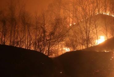 У Монголії вирують природні пожежі