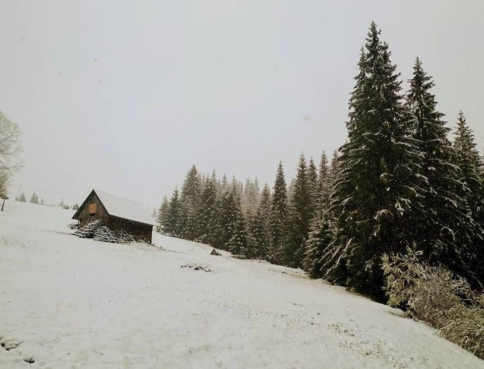 Карпаты заметает снегом / www.facebook.com/jazzxata