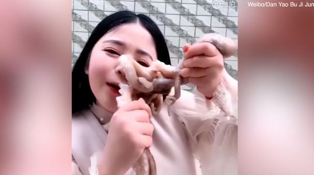 Девушке не удалось полакомиться осьминогом / Скриншот