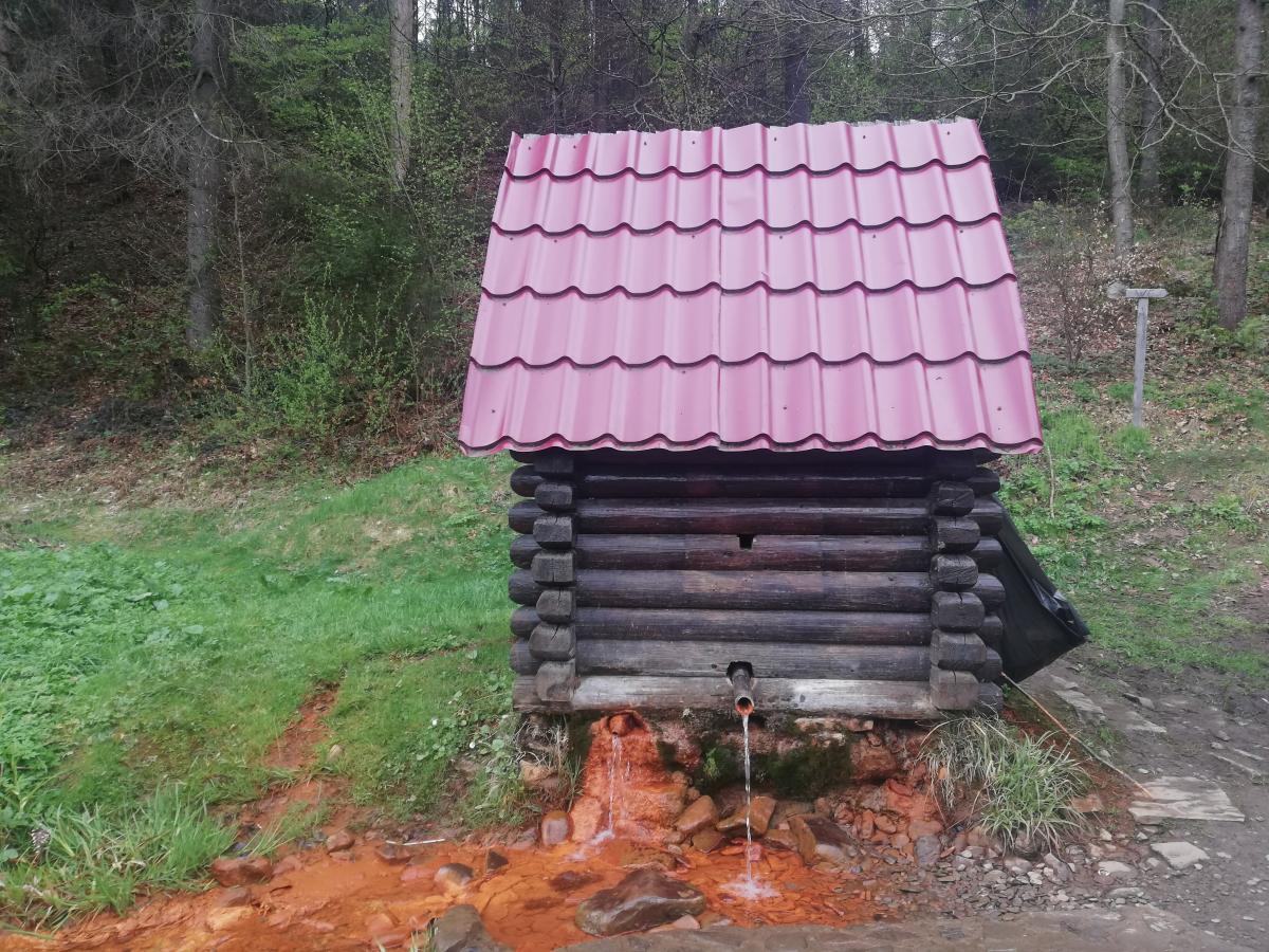 Джерело мінеральної води в селі Келечин / Фото Марина Григоренко
