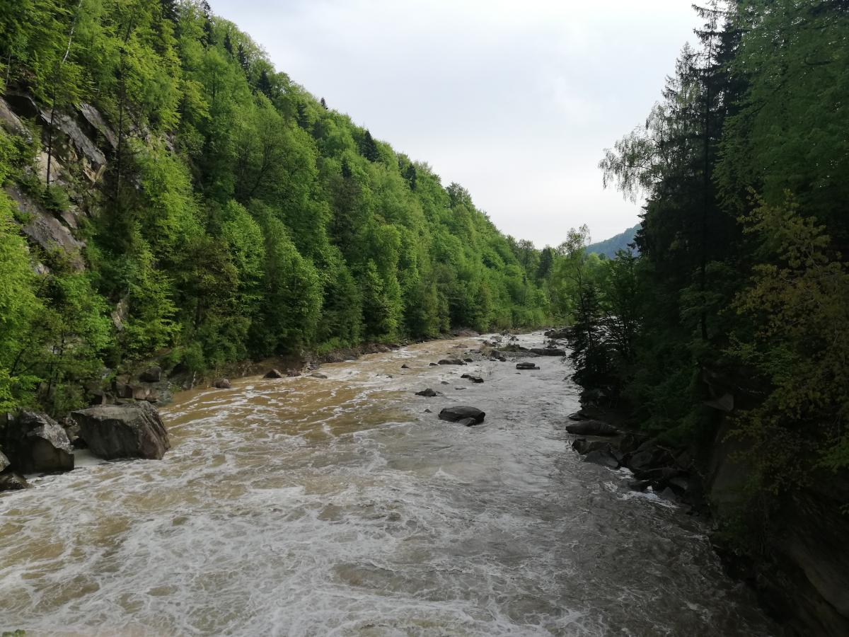 Річка Прут у Яремче / Фото Марина Григоренко