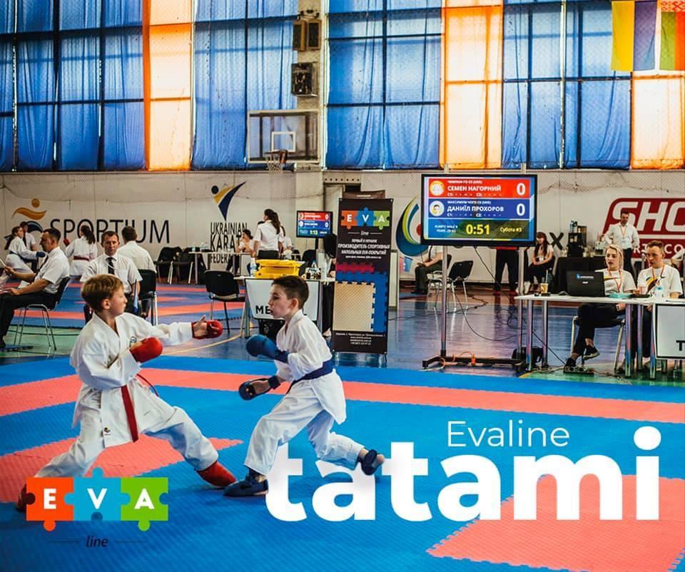 У Києві пройшов міжнародний турнір з карате Kyiv Open Cup 2019 / Українська федерація карате